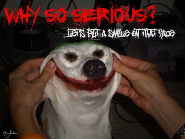 Why So Serious Funny Quotes. QuotesGram