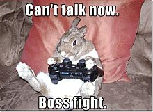 funny-pictures-rabbit-plays-video-games-6-.jpg